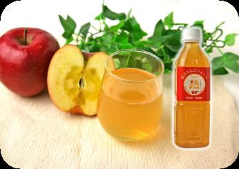 100%りんごジュース 500ml ペットボトル入り